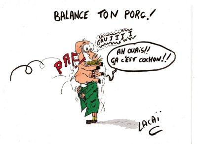 ob_ec74b9_balance-ton-porc