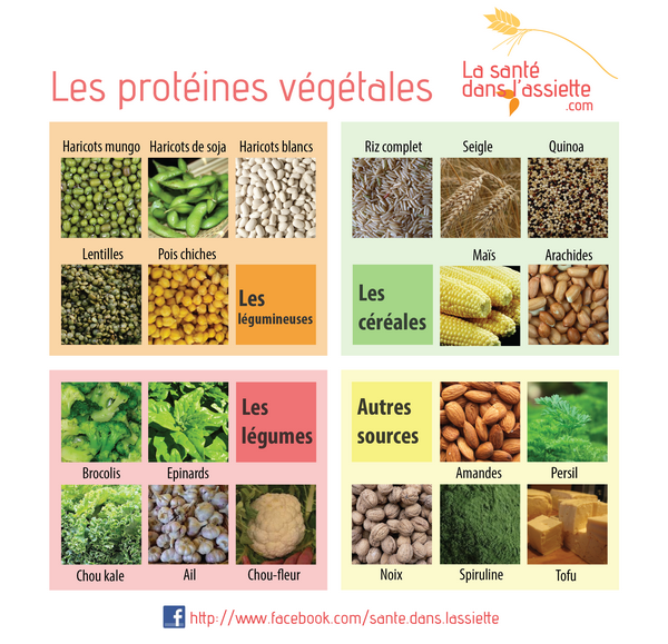proteines-01