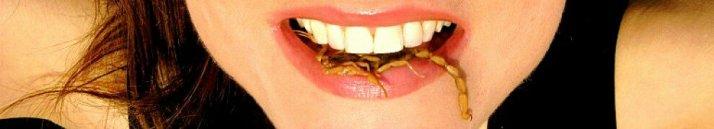 cropped-scorpionmouthbig-2011965450.jpg