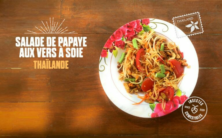 recette-insecte-salade-papaye-ver-soie-768x478-531400950.jpg