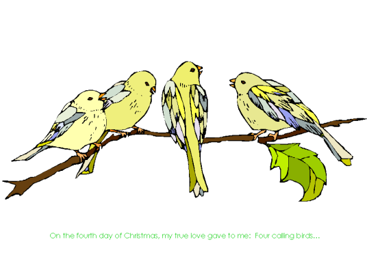 ccallingbirds